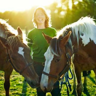 Things Horse Owners Need to Know