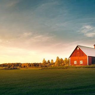How to Choose the Right Metal Barn