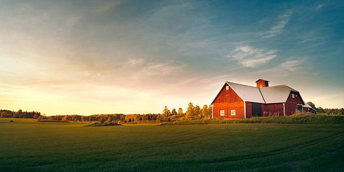 summer-field-with-red-barn